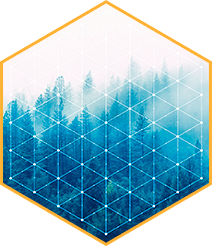 Hexagon pattern with trees in background